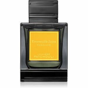 Ermenegildo Zegna Javanese Patchouli parfumovaná voda pre mužov 100 ml