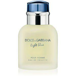 Dolce & Gabbana Light Blue Pour Homme toaletná voda pre mužov 40 ml