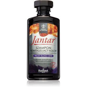 Farmona Jantar Silver šampón neutralizujúci žlté tóny 330 ml