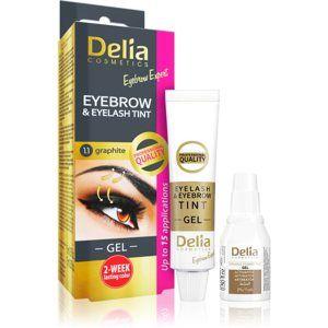 Delia Cosmetics Eyebrow Expert farba na obočie a riasy s aktivátorom