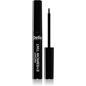 Delia Cosmetics Eyebrow Expert farba na obočie odtieň 4.0 BROWN 6 ml