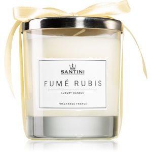SANTINI Cosmetic Fumé Rubis vonná sviečka 220 g