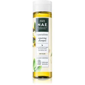 N.A.E. Riparazione regeneračný šampón pre suché vlasy 250 ml