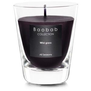 Baobab Wild Grass vonná sviečka (votívna) 6,5 cm